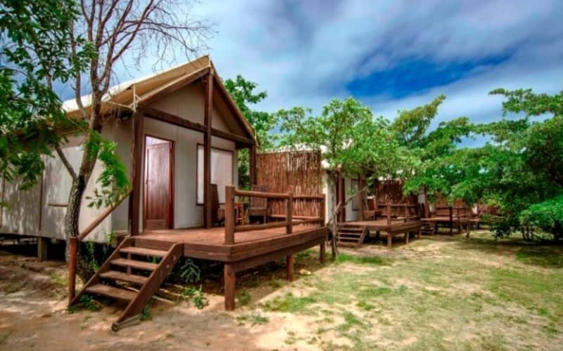 Kruger National Park: 1 Night Stay for 2 at Nkambeni Safari Tented Camp + Meals + Game Drive!