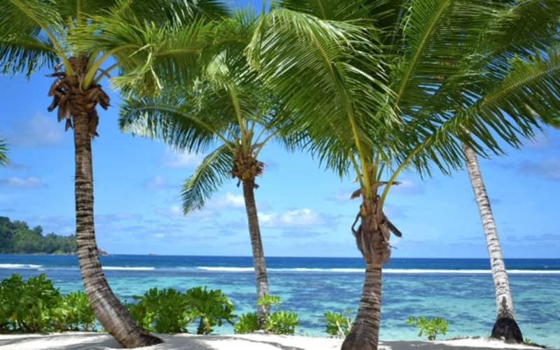 Kempinski Seychelles Resort 5*: 7 Nights Luxury Stay on Baie Lazare Beach + Breakfast & FLIGHTS - From only R32 399 pp!