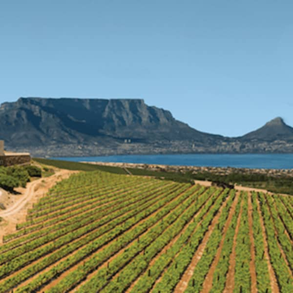 DURBANVILLE Winelands HELICOPTER TOUR for 4 to Durbanville Hills, Meerendal or De Grendel