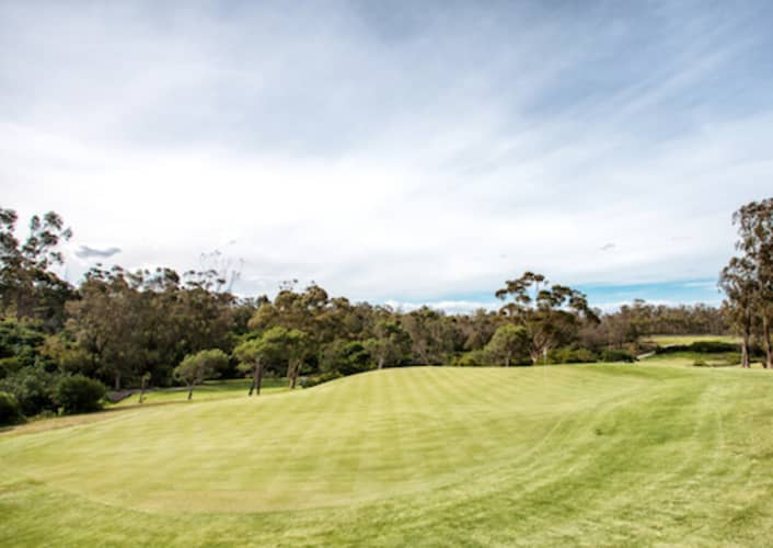 Wedgewood Golf & Country Estate: 4-Ball Special + Carts - only R1 449!