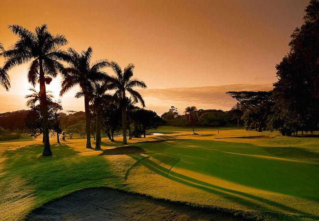 SELBORNE PARK GOLF CLUB: 2-Ball + CARTS for only R799!