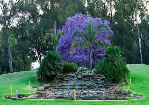 Benoni Country Club: 2-Ball Deal for only R289!
