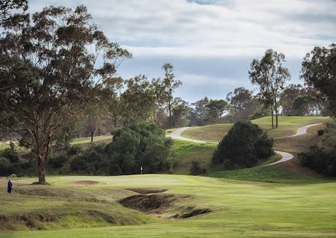 Wedgewood Golf & Country Estate: 4-Ball INCLUDING Carts for only R1 549