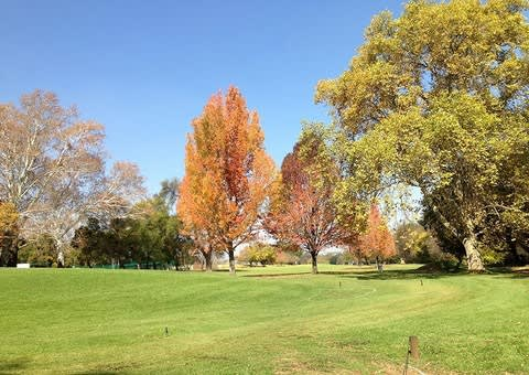 WOODHILL COUNTRY CLUB: 4-ball Deal + CARTS from just R1 769!