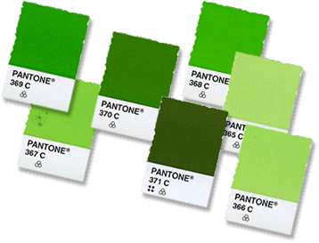 groene pantone kleurenchips