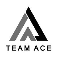 Team_Ace_-_HARBIRZ_INC_tcvjha