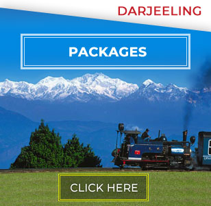 Darjeeling Calling