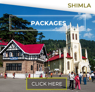 Shimla Kufri Tour Packages
