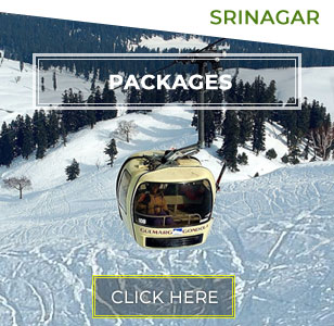 Srinagar Tour Packages