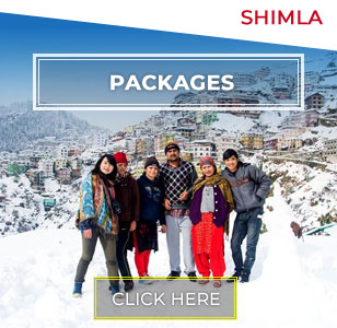 Shimla Winter Tour