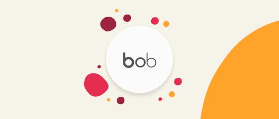 One pager Meet Bob - Meet-bob-main-image-4.png