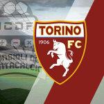 Guida asta fantacalcio 2017 Torino