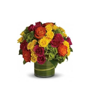 Brant Florist Aurora Red Flowers