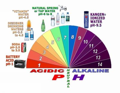 Difference between Alkaline and Alkalized