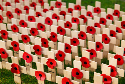 How Did the Poppy Become the Symbol of Remembrance Day?