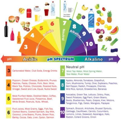 acid, alkaline, pH
