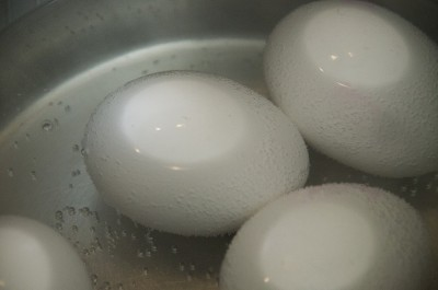 Raw Eggs: The Good, The Bad, and The Eggy