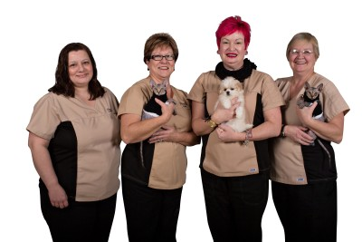 Animal Hospital of Cambridge, Ontario, Veterinary Hospital