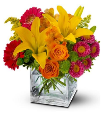 All the Ways that Flowers, Red or Blue or Any Colour, can Brighten Your Day