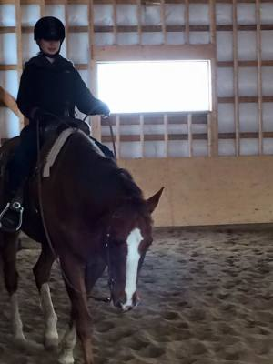 horseback riding, sports for kids, kids and horses, children and horses, young equestrians, youth riders, youth horseback riders