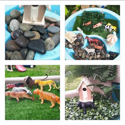 Discovery, provocations, RECE, Children's Interests, needs, play