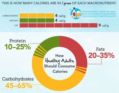 macronutrients, calories