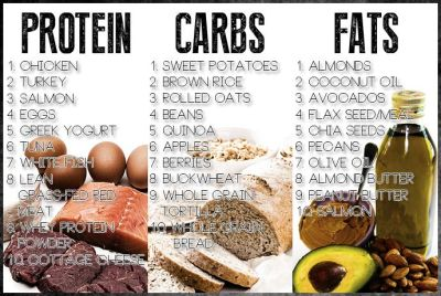 macronutrients, protein, carbs, fats,