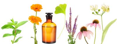 natural medicine, powerful, toxin-free, health, holistic
