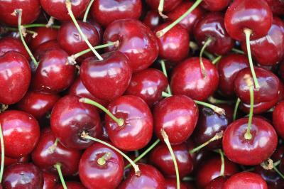 tart cherries ѕоurсеѕ оf mеlаtоnіn tаrt сhеrrіеѕ health information