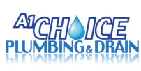 clogged toilets kelowna plumbing problems drains