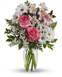 Stunning Daisies and Roses Flower Arrangement by Brant Florist