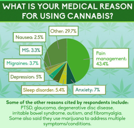 medical marijuana, pain management, migraines, PTSD