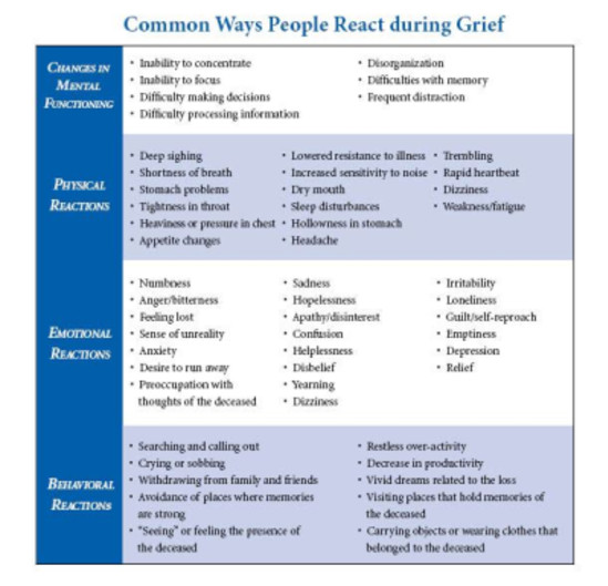 reactions to grief, emotional, physical, behavioral, cultural