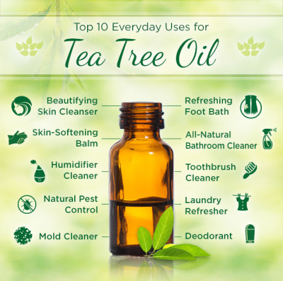 top 10 everyday uses for tea tree oil