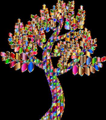 tree, trust, possibilities, rainbow, selfcare