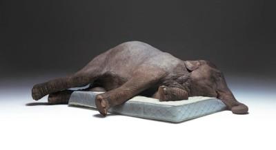 mattress, sleeping position, support