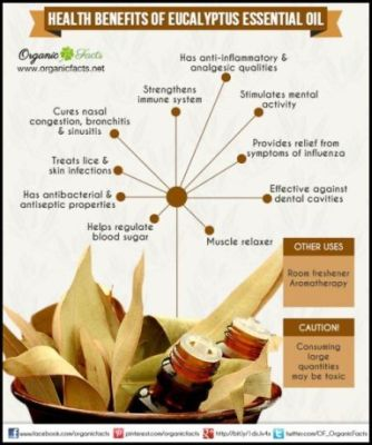 health benefits of eucalyptus essential oil