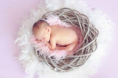 nest, comfortable, sleep, A Sacred Journey, Better Bedtime