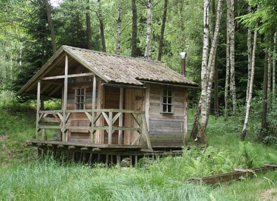 Cabin, tiny house, tiny home movement, building plans