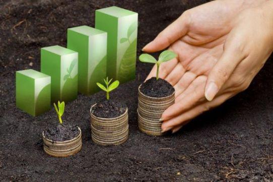 Jack Lumsden, MBA, CFP® Senior Wealth Advisor, Assante Financial Management Ltd.