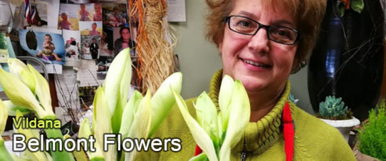 flowers,small business,shop local