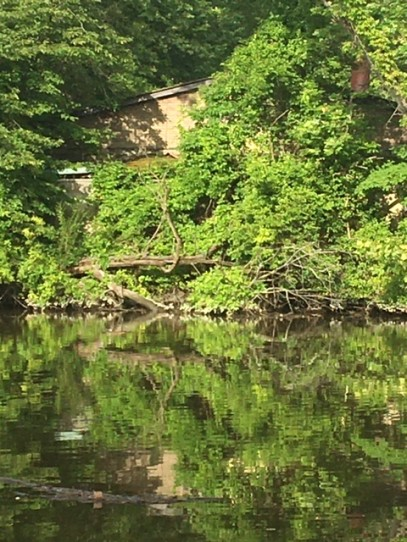 A Secluded Tale along the banks of the Hackensack River