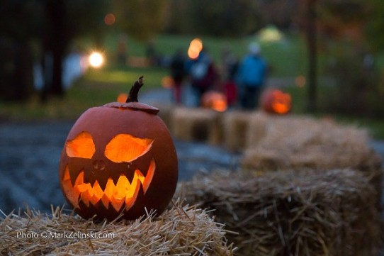 Clinton Howell, Realtor, Burlington, Events, Great Pumpkin Trail