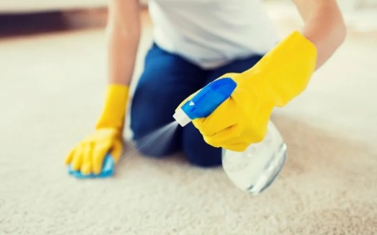 Lakeshore Cleaning and Restoration