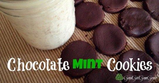 chocolate mint cookies, cookies, paleo recipes