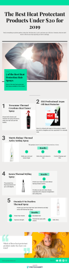 Best Heat Protectant Products Infogrpahics
