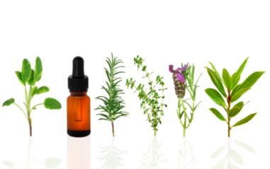 heaven scent, aromatherapy, essential oils