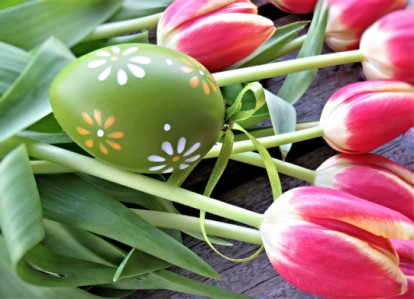tulips, spring, easter, wellness, nutrition, eat well
