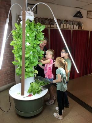 Fasada Windows and Blinds and Doors, Healthy Home, Tower Garden