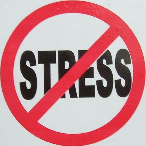 stress free, stressful, remove stress, exercise, feel good